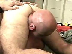 Bear gays lick and suck each other daddy gay movies
