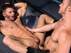 Muscled, hairy stud Brian Bonds has a big, girthy boner that requires sucking. Brogan Reed is up to the challenge and welcomes a vigorous face fucking. Thick spit appears as Brogan deepthroats Brian's shaft and sucks his hefty balls. To return the favor, daddy gay movies